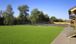 Ландшафтный дизайн участка, купить газон, Заокский район, Тульская область