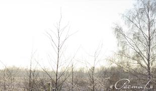 Капитан Ленд - Зима на Лесной очереди. Капитан Клаб, Заокский район.