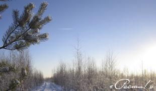 Капитан Ленд - Зима на Лесной очереди. Капитан Клаб, Заокский район, Симферопольское шоссе