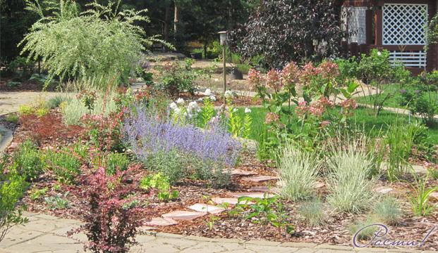 природный сад, лесной ландшафтный дизайн, пейзажные цветники, фото