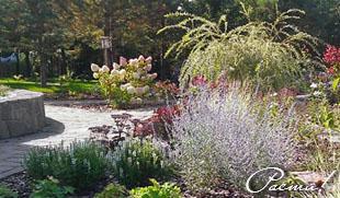 Природный лесной ландшафтный дизайн участка, сад в пейзажном стиле, заокский