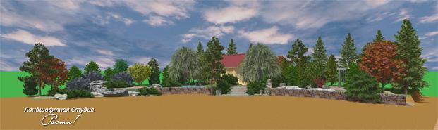 Дизайн лесного участка, лесной стиль сада, пейзажный сад, закский, фото