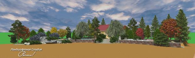 Дизайн лесного участка, природный ландшафтный дизайн, заокский, фото