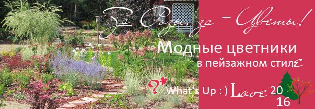 природный ландшафтный дизайн, лесной стиль, сада, участка, цветник, фото