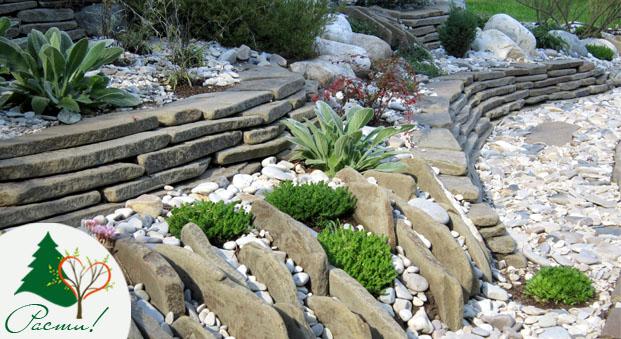 альпийская горка, фото, дизайн, ландшафтный камень, рокарий